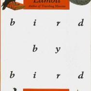 Writing Book Review: Bird by Bird