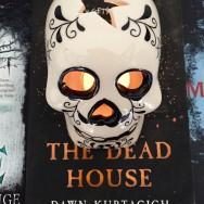 Spooky YA Halloween Reads